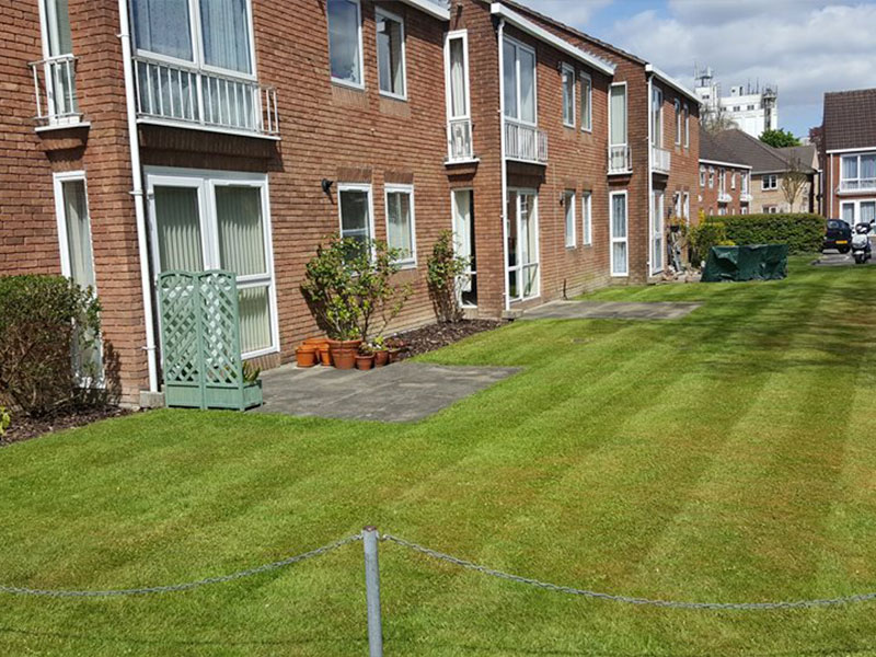 Landscape Maintenance at the Beeches, Andover